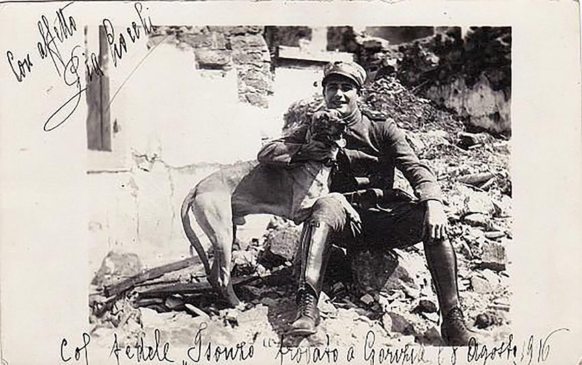 5 Cane Isonzo trovato a Gorizia 1916