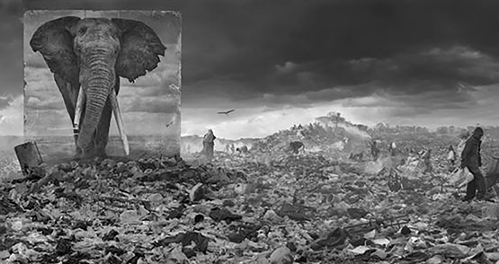 14 Nick Brandt Inherit the Dust