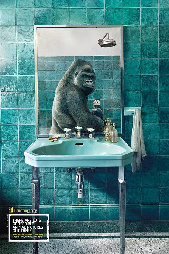 17 National-Geographic-Gorilla