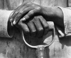 modotti mani